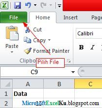 how to put password on excel file 2010